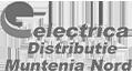 electrica_muntenia_nord_g